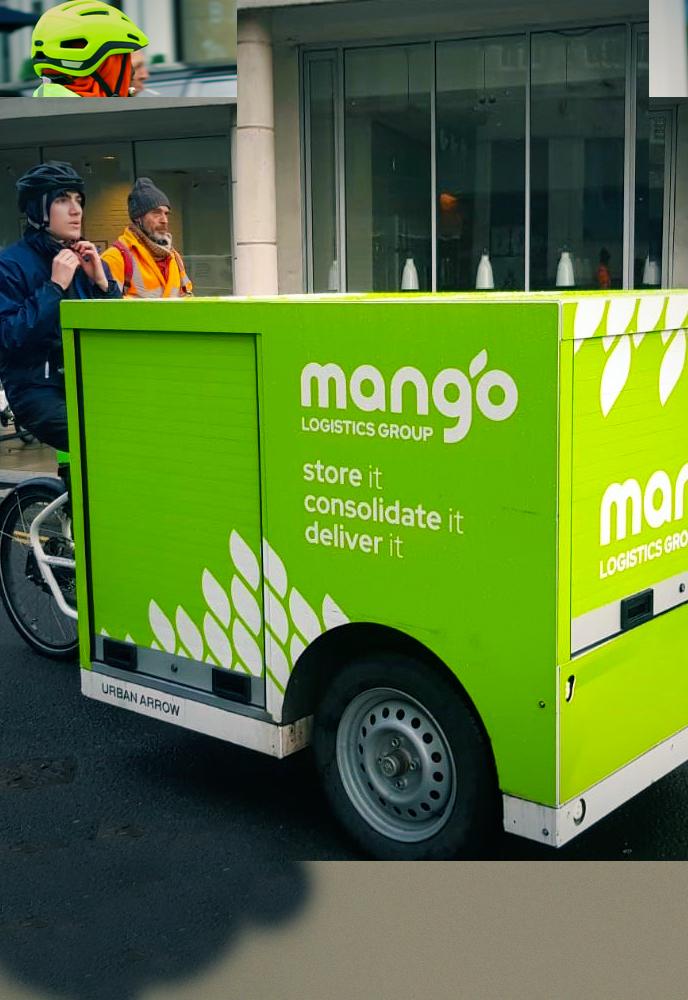 mango-leafimage